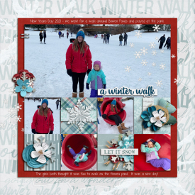 2021-01_Winter_walk.jpg