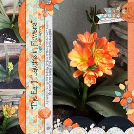 3-2018bdayflower_web.jpg
