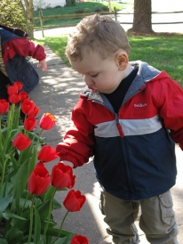 4-08_Ben_learning_to_smell_flowers_9_.JPG