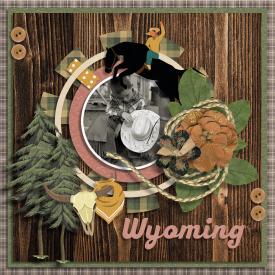 50_States_Wyoming_06_05_20.jpg