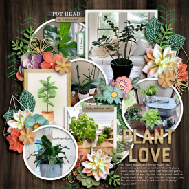 8-21-Plant-Love-copy.jpg
