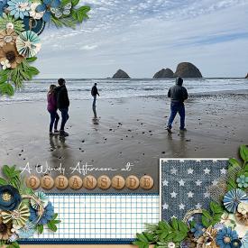 A-Windy-afternoon-in-Oceanside.jpg