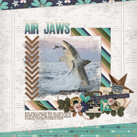 AirJaws_SSD.jpg