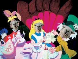 Alice-llama-in-llama-Land.jpg