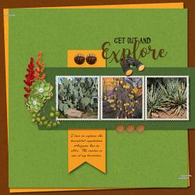 Arizona_Cactus-001_copy.jpg