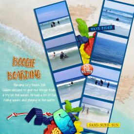 Beach2017web.jpg