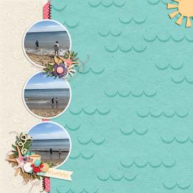 Beach_SSD.jpg