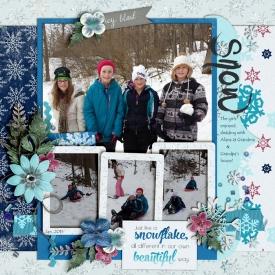Beautiful_Snowflakes_Jan2015_smaller.jpg