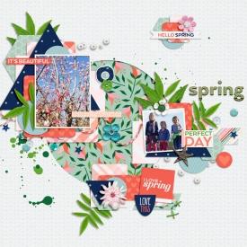 CD_PeacockDreams_SpringIsInTheAirTTT.jpg
