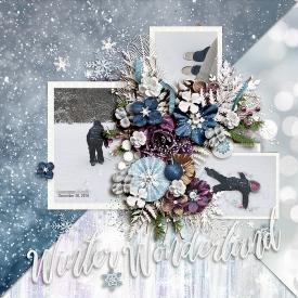 CG-kcb_WinterWonderbl.jpg