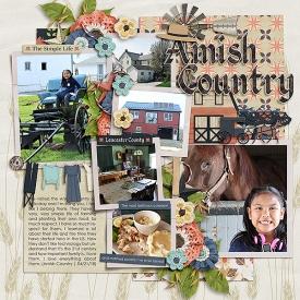 CG-msg_AmishCountrybl.jpg