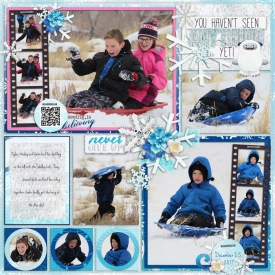 Christmas-sledding-ljs-pf2018-jul-temp6.jpg