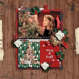 Christmastime_RR_-_Ella_11_27.jpg