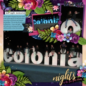Colonia-Group-at-NIght_-smaller.jpg