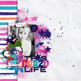 CrazyLife1.jpg