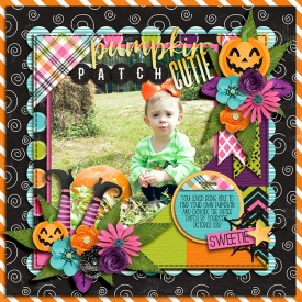DSI_pumpkinpatch_CT7.jpg