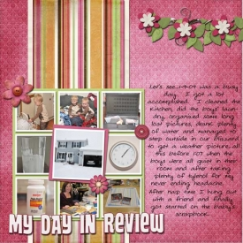 Day-in-Review-1-9-09.jpg