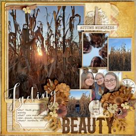 Fading-Beauty-Fall-2020_-smaller.jpg