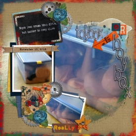 Family2016_BoyBox_700x700_.jpg