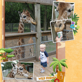 FeedingGiraffes_SSD.jpg