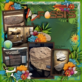 Fossils-Creation-Museum-April-2017_-smaller.jpg
