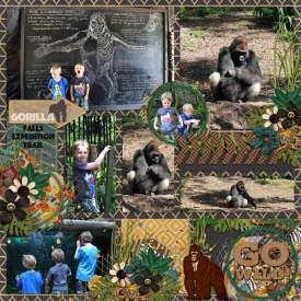 Gorilla-Falls-jencdesigns-pocketsnaps-vl1-tp3-sh.jpg