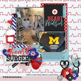 Heart_Surgery_Fall_2017_smaller.jpg