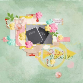 Hello_-Goodbye-Gallery-copy.jpg