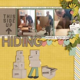 Hiding_June_2016_smaller.jpg
