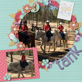 Horse_riding_-_Tank.jpg