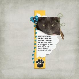 I-love-my-cat-WebSSD.jpg