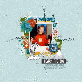 LearnToSkiweb.jpg