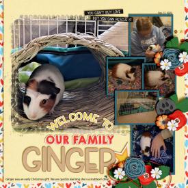 Meet_Ginger_Dec_17_2020_smaller.jpg