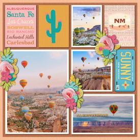 New-Mexico50States.jpg