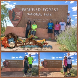 Petrified_Forest_Sign_7-16-16.jpg