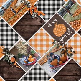 Pumpkins_SSD1.jpg