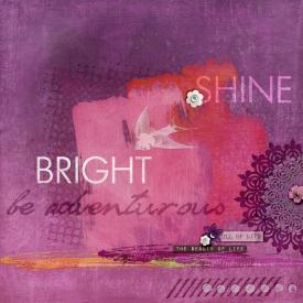 SP-haUV-ShineBright-s7.jpg
