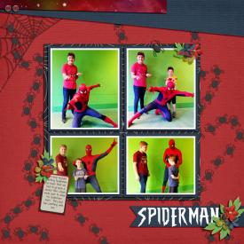 SPIDERMANweb.jpg