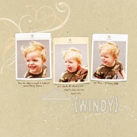 SSD-windy-sm.jpg