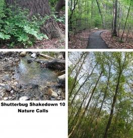 ShutterbugShakedown10_Rach3975.jpg