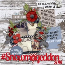 Snowmageddon_600_x_600_.jpg