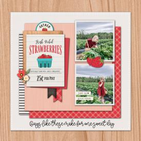 StrawberriesPS.jpg