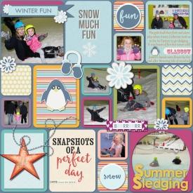 Summer_sledging_web.jpg