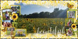 Sunflower_Fields_Aug_20_2020_smaller.jpg