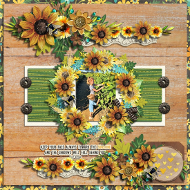 Sunflower_sayings_2_CMG_-_ella.jpg