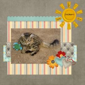 Sunshine-Kitty.jpg