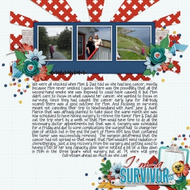 Survivor_SSD.jpg