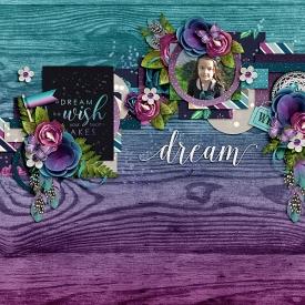 TD--WS_-_KCB-Dreamer_-copy.jpg