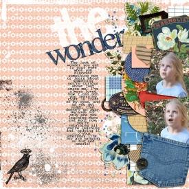 The-Wonder700.jpg
