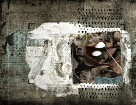 Untitled-214.jpg